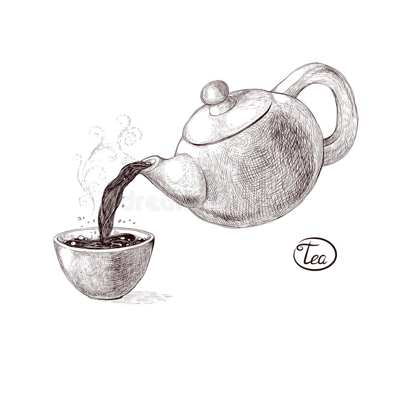 Vector sketch illustration of fresh welded hot and flavored morning tea from the teapot poured into the teacup. Drink. With splashes and steam pouring into the vector illustration