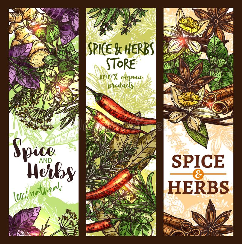 Vector sketch spices and herbs store banners stock illustration