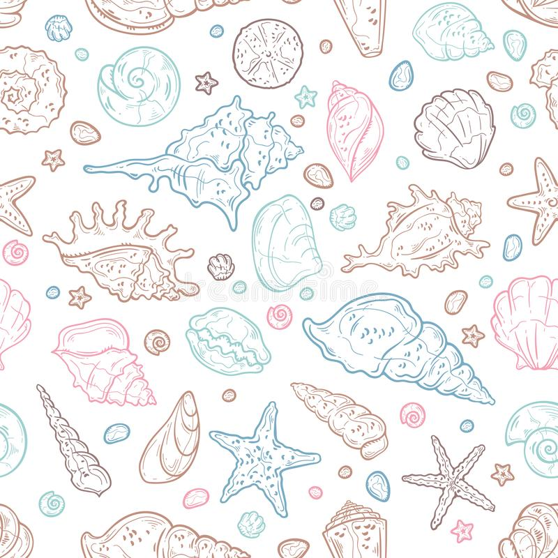 Vector sketching illustrations. Different types of seashells. Isolated objects for your design. Each object can be changed and moved vector illustration
