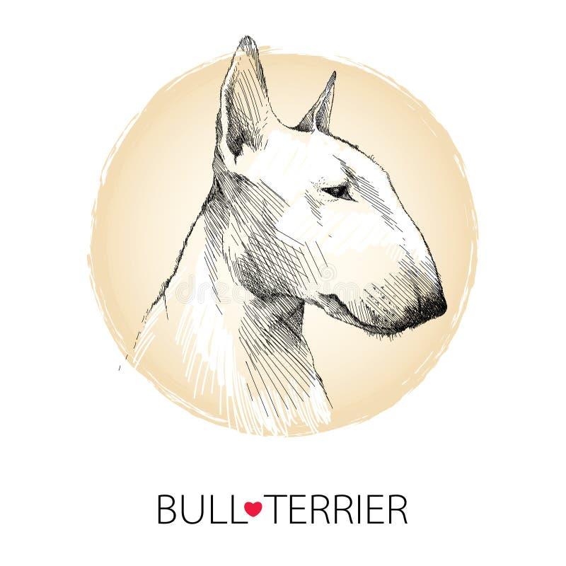 Vector Skizze des englischen Bullterrierhundekopfprofils auf weißem Hintergrund mit beige rundem Rahmen lizenzfreie abbildung