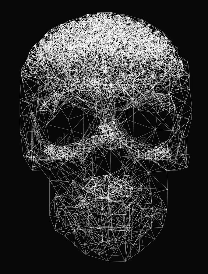Vector Skull Drawing. Vector line art. Skull illustration. Polygonal network of thin lines on Black background royalty free illustration