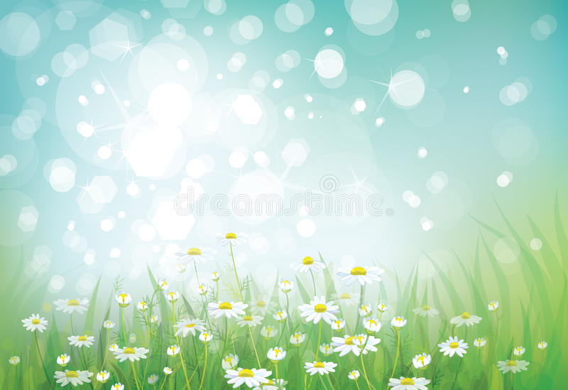 Vector of spring background vector illustration