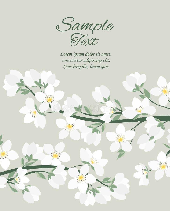 Vector spring blossom royalty free illustration