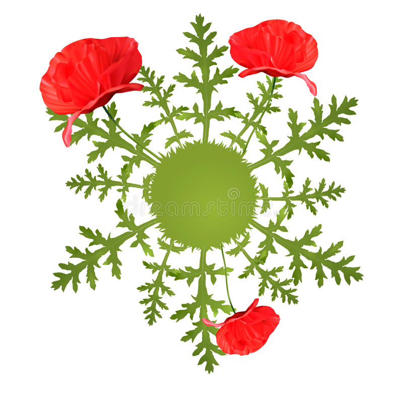 Vector spring circular background with poppy stock illustration