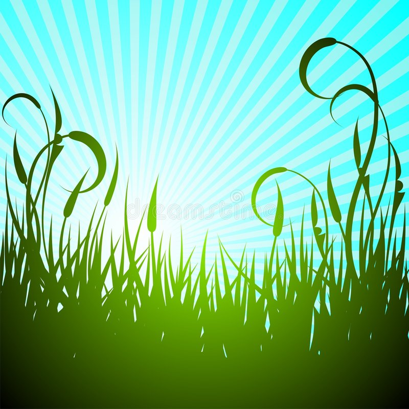 Vector spring illustration with green flower. On blue background royalty free illustration