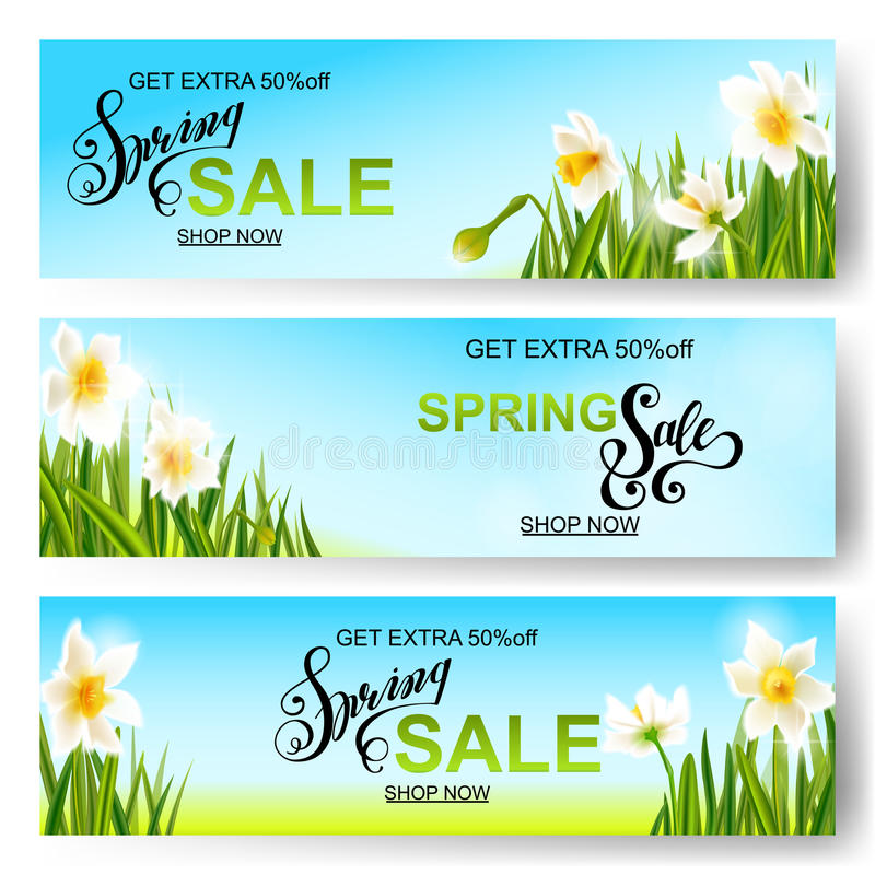 Vector spring nature background, daffodil flowers. royalty free illustration