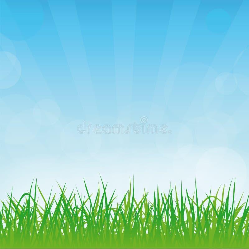 Vector spring or summer background royalty free illustration