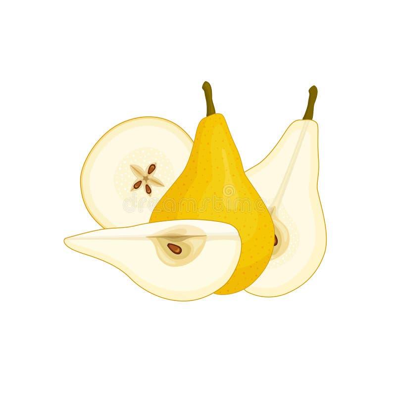 Vector still life with a pear. vector illustration