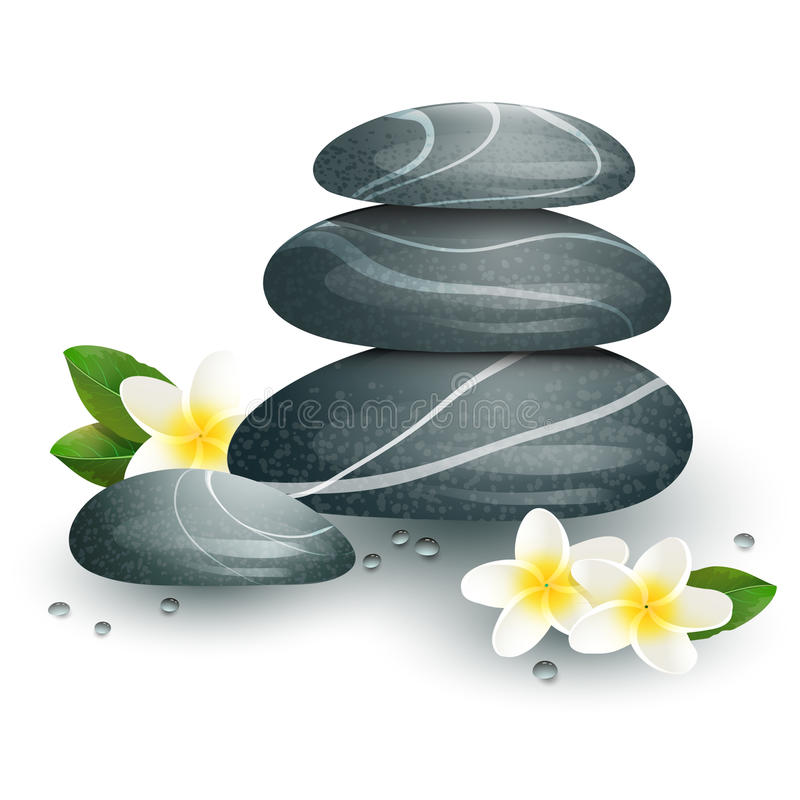 Vector still life on spa theme with stones. And flowers on white background royalty free illustration