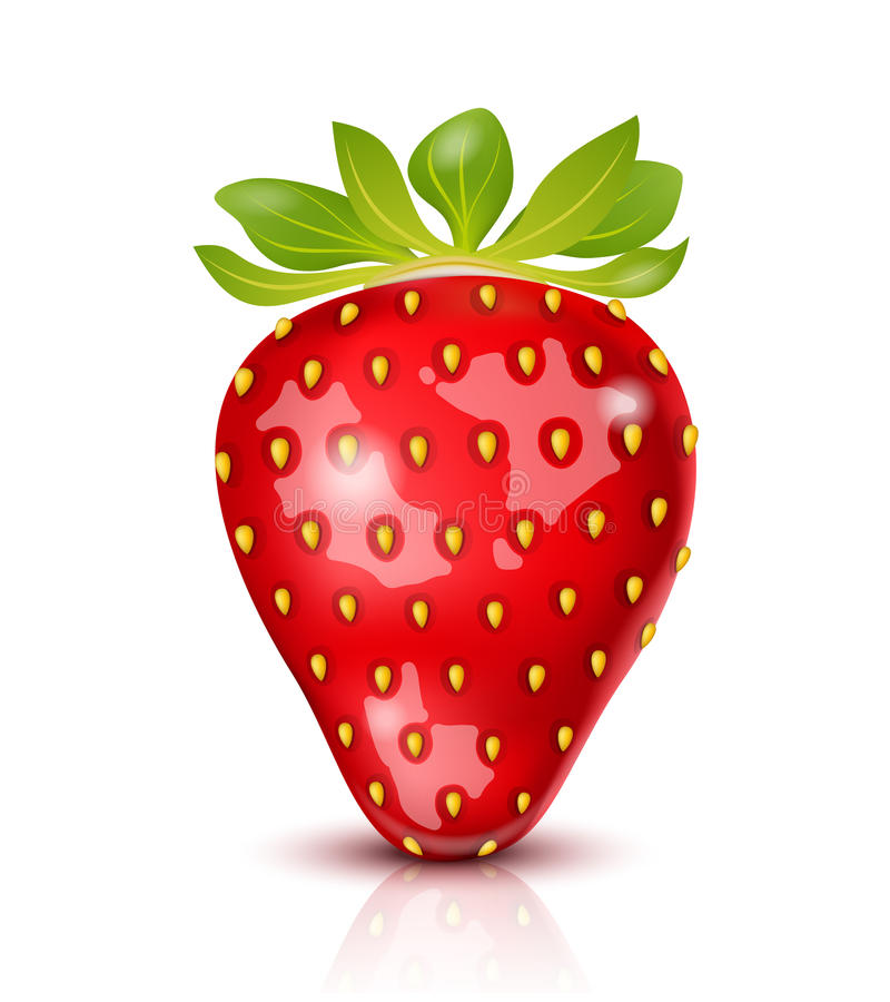Download Vector Strawberry stock vector. Illustration of health - 29025216