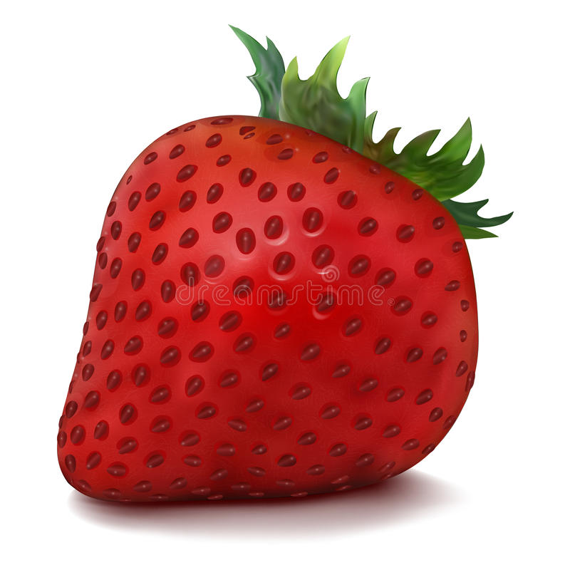 Vector Strawberry Royalty Free Stock Photography
