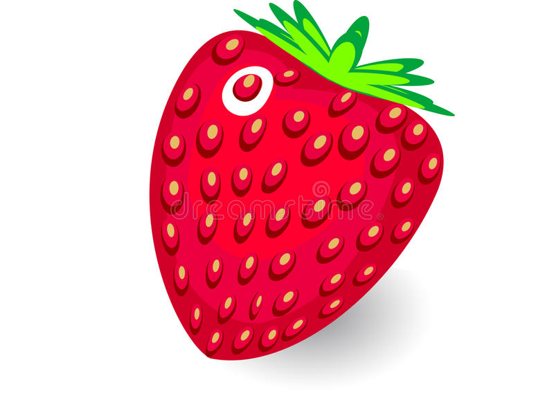 Download Vector  Strawberry On White Background Stock Vector - Image: 32110804