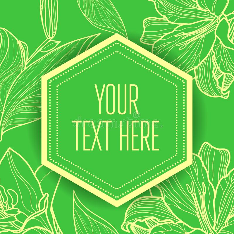 Vector stylish vintage floral green background royalty free illustration
