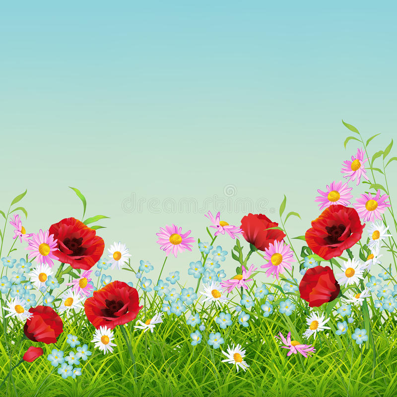 Vector Summer Flower Flyer stock illustration