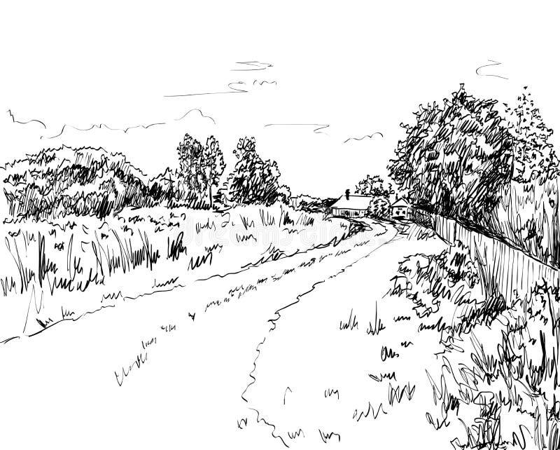Vector summer landscape. Vector illustration summer landscape with country road royalty free illustration