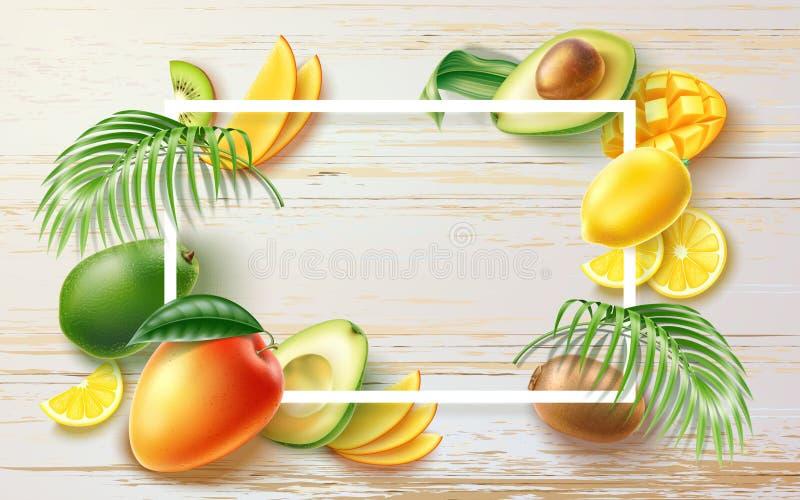 Vector summer party tropical fruit banner in frame stock illustration
