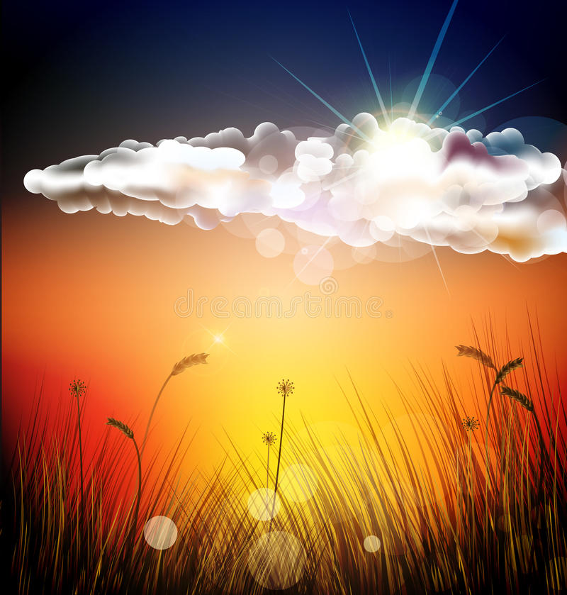 The vector sunset. With grass royalty free illustration