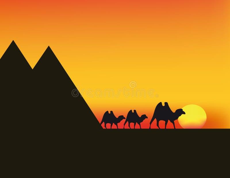 Vector sunset in Egypt vector illustration