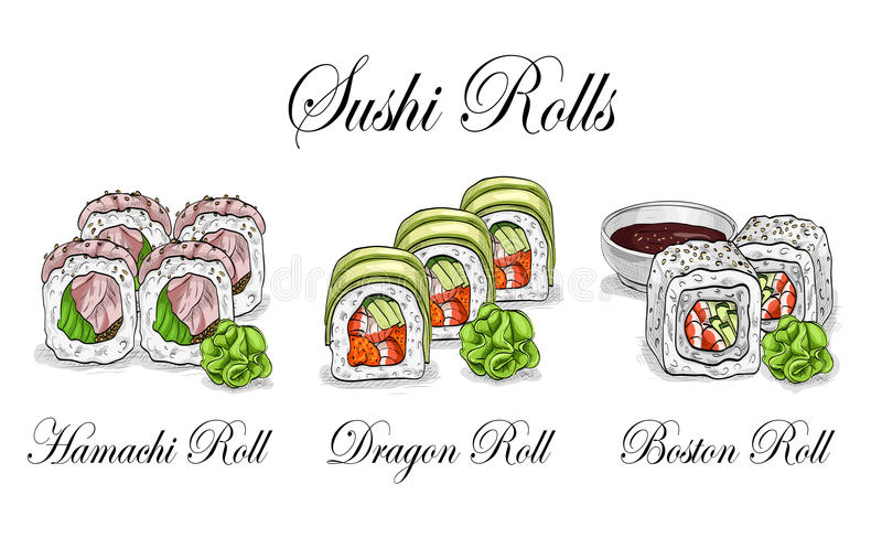Vector sushi color sketch, set. Japanese cuisine, traditional food icon. Perfect vector illustration vector illustration