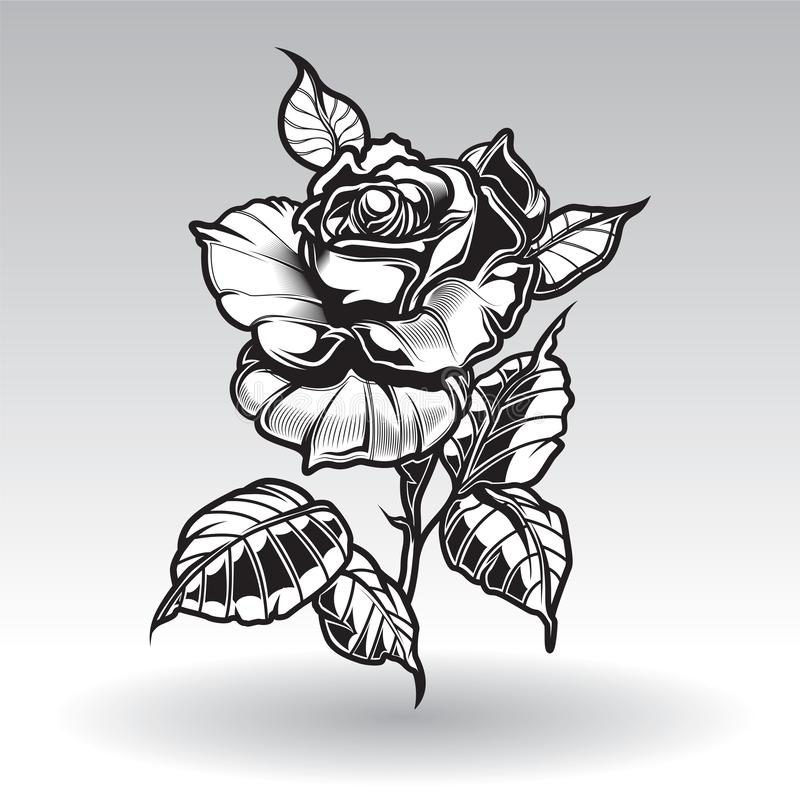 Vector tattoo roses with leaves on white background stock image