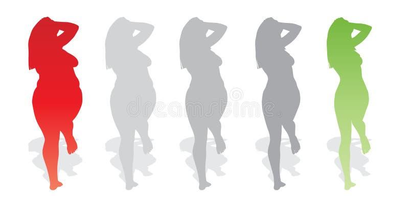 Vector te zwaar zwaarlijvig wijfje versus slank geschikt gezond lichaam royalty-vrije illustratie