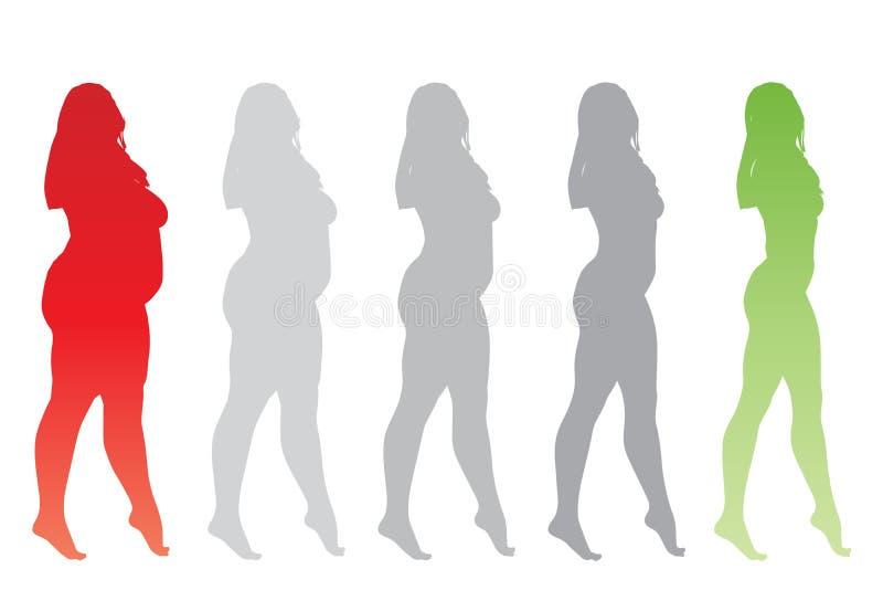 Vector te zwaar zwaarlijvig wijfje versus slank geschikt gezond lichaam stock illustratie