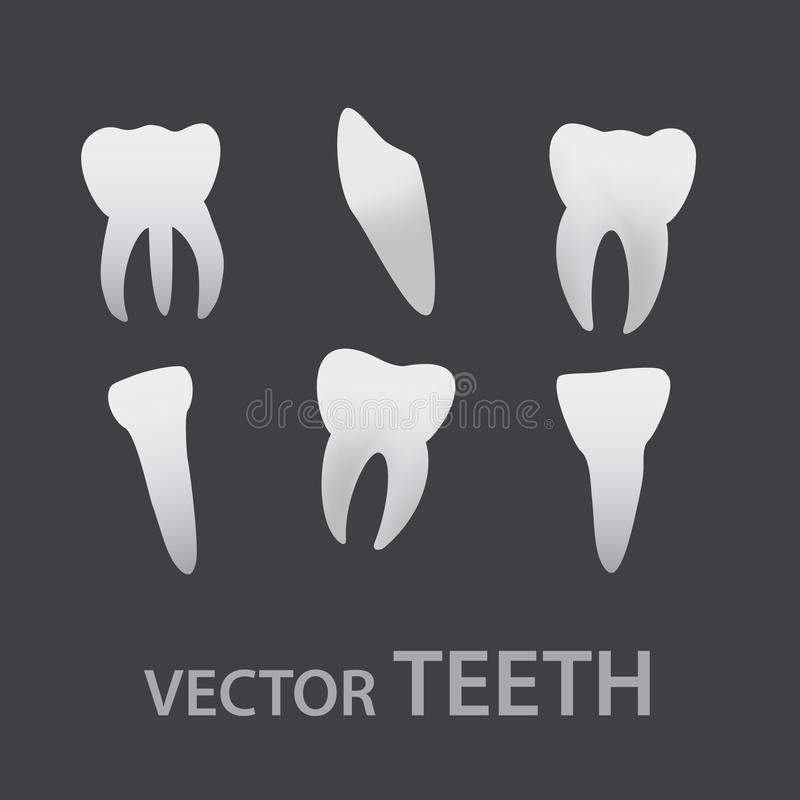 Download Vector Teeth Icons Eps10 Royalty Free Stock Photography - Image: 36045207