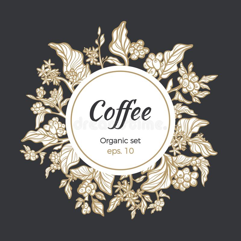 Vector template of coffee bean and branches in circle royalty free illustration