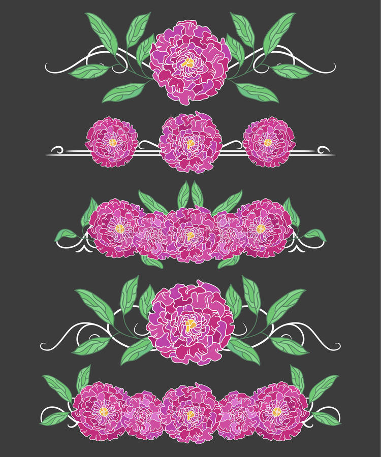 Download Vector Text Dividers With Green Peony Leaves And Lilac Peony Stock Vector - Image: 83720377