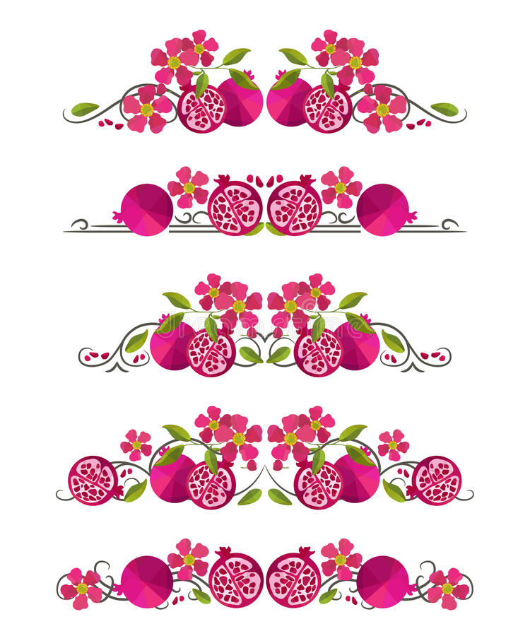Vector text dividers with pomegranate and flower. On white field vector illustration