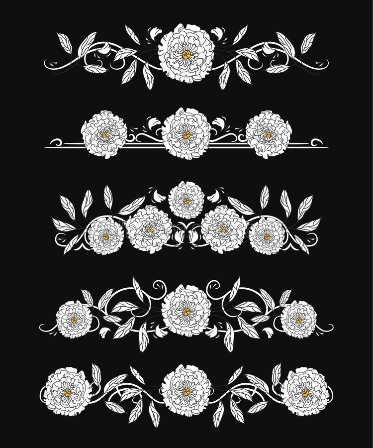 Download Vector Text Dividers With White Peony And Leaves Stock Vector - Image: 83721198