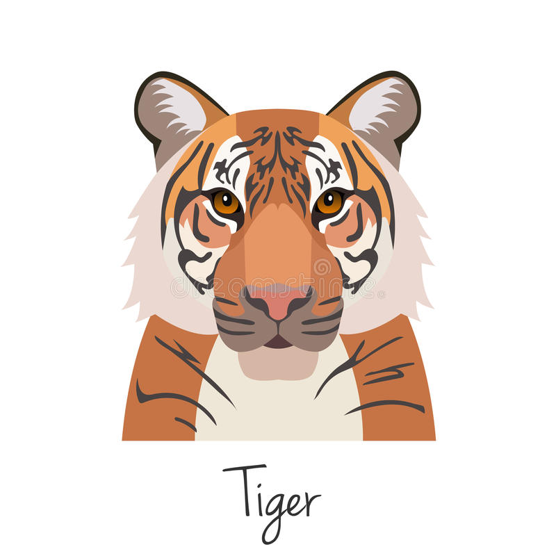 Vector tiger head isolated. Flat style, cartoon object stock illustration