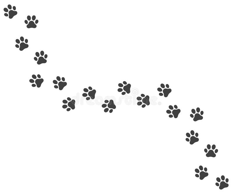 Vector trail of dog footprints royalty free illustration
