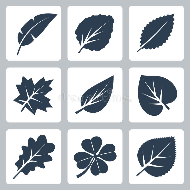 Vector tree leaves icons set stock illustration
