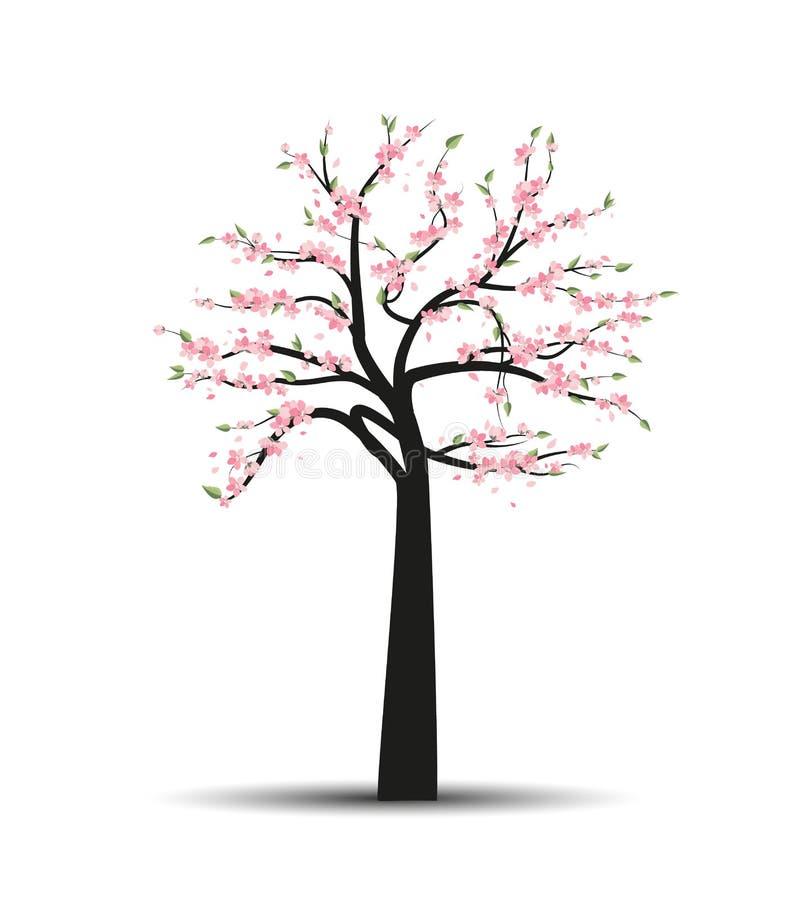 Vector tree sakura stock illustration