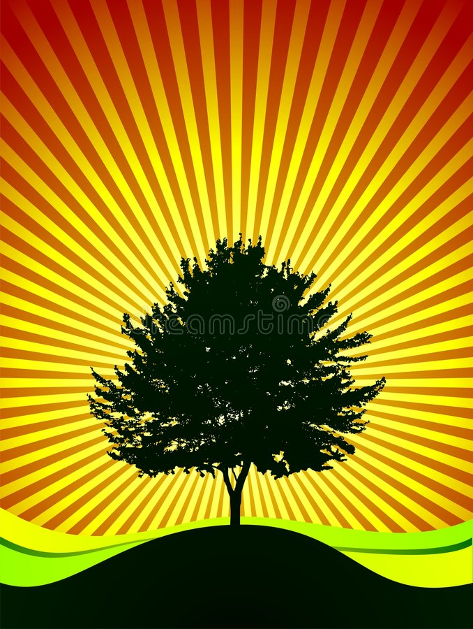 Download Vector Tree On Shine Background Stock Vector - Image: 4342039