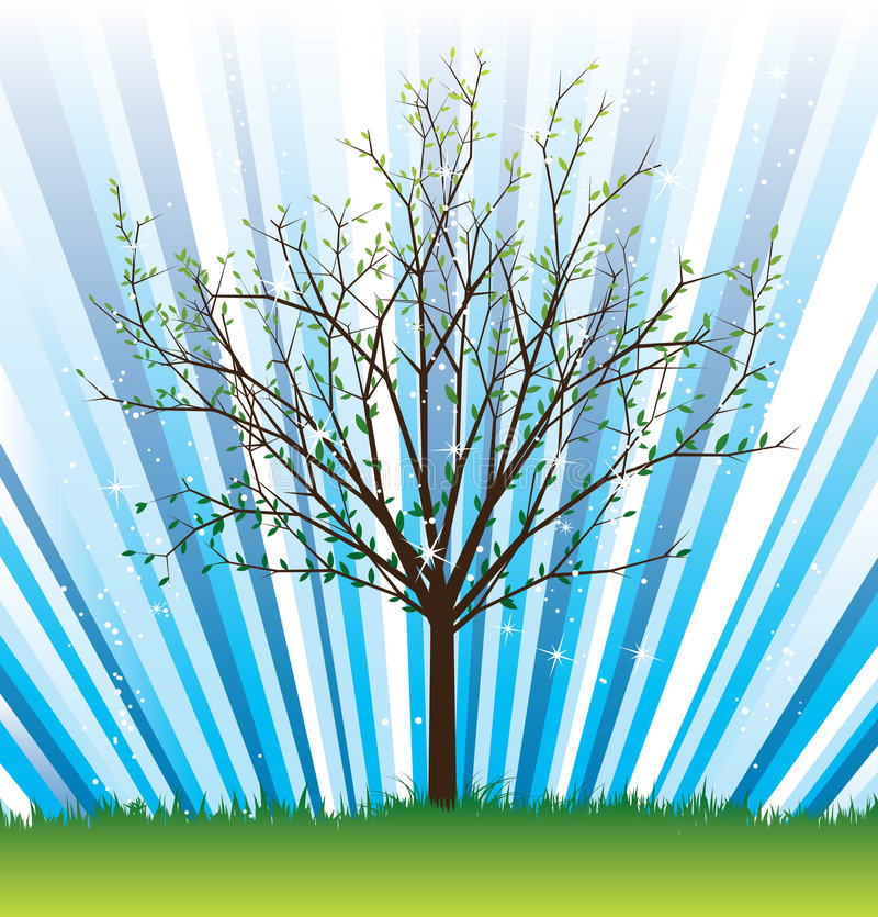 Vector_tree_spring illustrazione di stock
