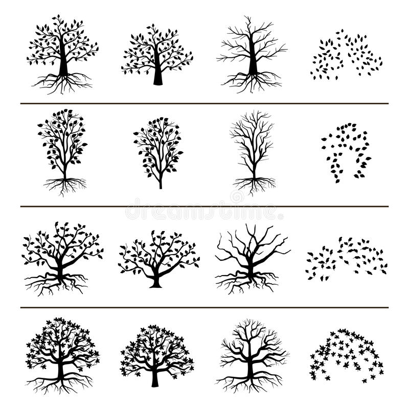 Vector trees with roots, foliage and fallen leaves isolated on white background. Silhouette of tree, and leaf monochrome illustration stock illustration