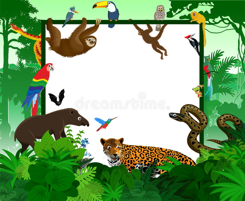Vector tropical card with jungle animals. Jungle style rainforest illustration. stock illustration