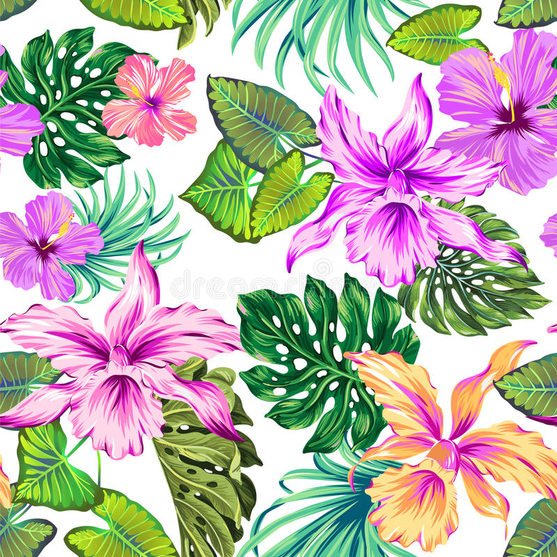 Vector tropical pattern with orchids. royalty free illustration