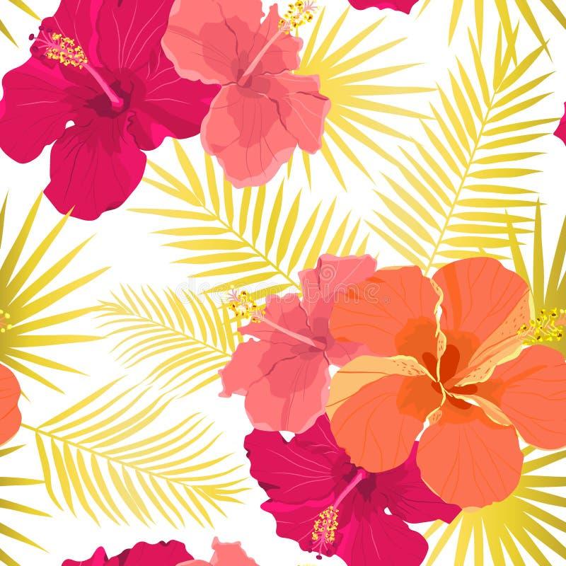 Vector tropisch patroon met hibiscusbloemen en tropische bladeren Bloemenontwerp als achtergrond voor schoonheidsmiddelen, kuuroo stock illustratie