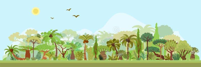 Vector tropisch regenwoudlandschap met palmen en andere tropische bomen Tropische bos panoramische illustratie vlak stock illustratie