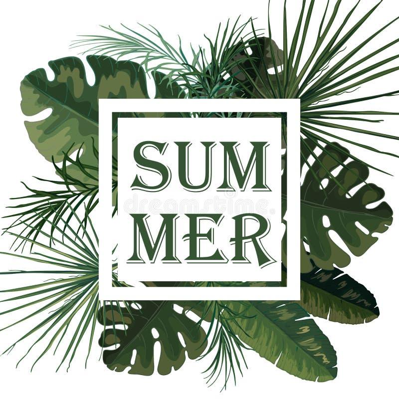 Vector tropische achtergrond van groene palmbladen vector illustratie