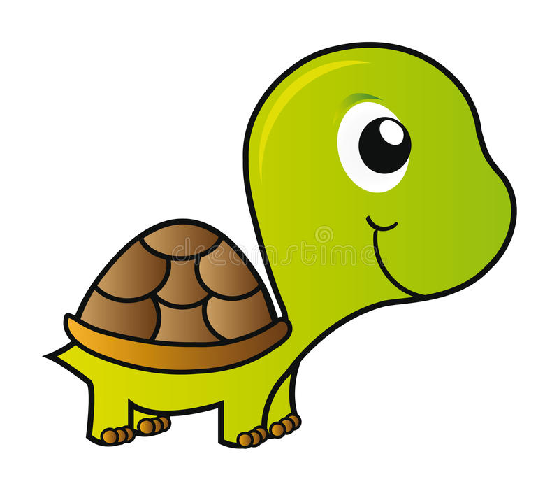 Vector turtle. Nice illustration - green young turtle isolated on white background stock illustration