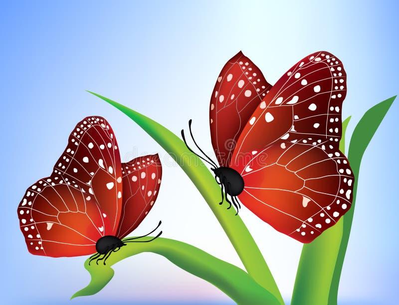 Vector two butterflies stock illustration