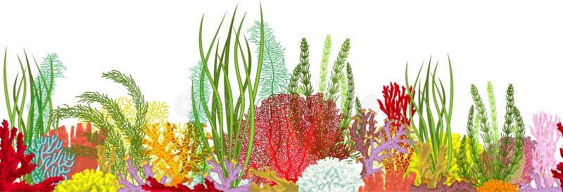 Vector underwater coral reef horizontal seamless pattern. Undersea bottom texture. Vector underwater coral reef horizontal seamless pattern. Undersea bottom stock illustration