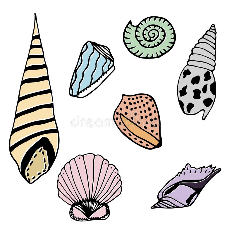 Vector underwater sea cartoon. Various seashells. Great for web page background, wrapping paper, cards,notebook and invitation.  stock illustration