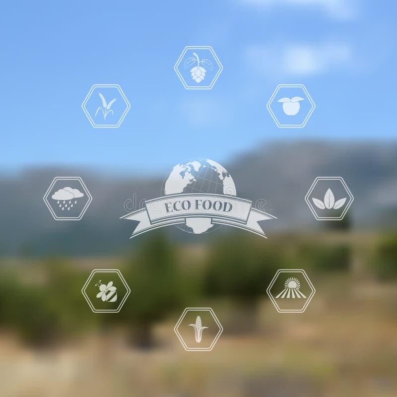 Vector vage achtergrond met natuurvoedingpictogrammen vector illustratie