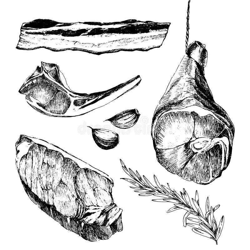 Vector van de de schetstekening van het vleeslapje vlees de ontwerpermalplaatje lamsrib, de ham van Parma, lendestuk royalty-vrije illustratie