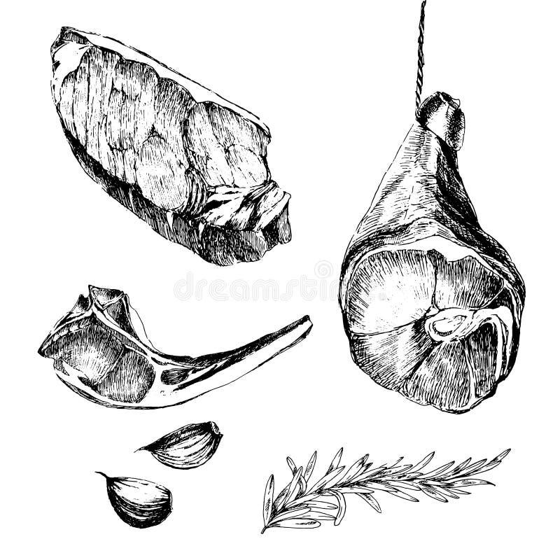 Vector van de de schetstekening van het vleeslapje vlees de ontwerpermalplaatje lamsrib, de ham van Parma, lendestuk stock illustratie